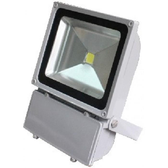 Proiector Led 100W  2700K, lumina calda