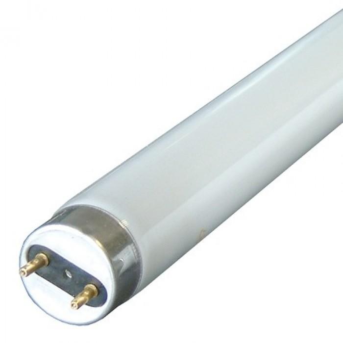 Tub Neon Fluorescent T5 G10 8W 6400K